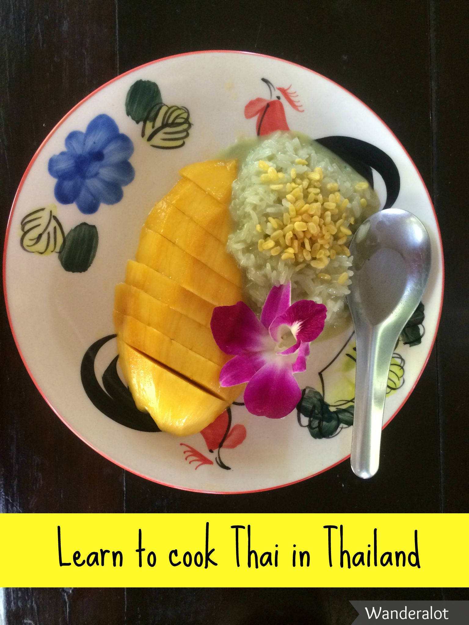 Learn to cook Thai food in Thailand
