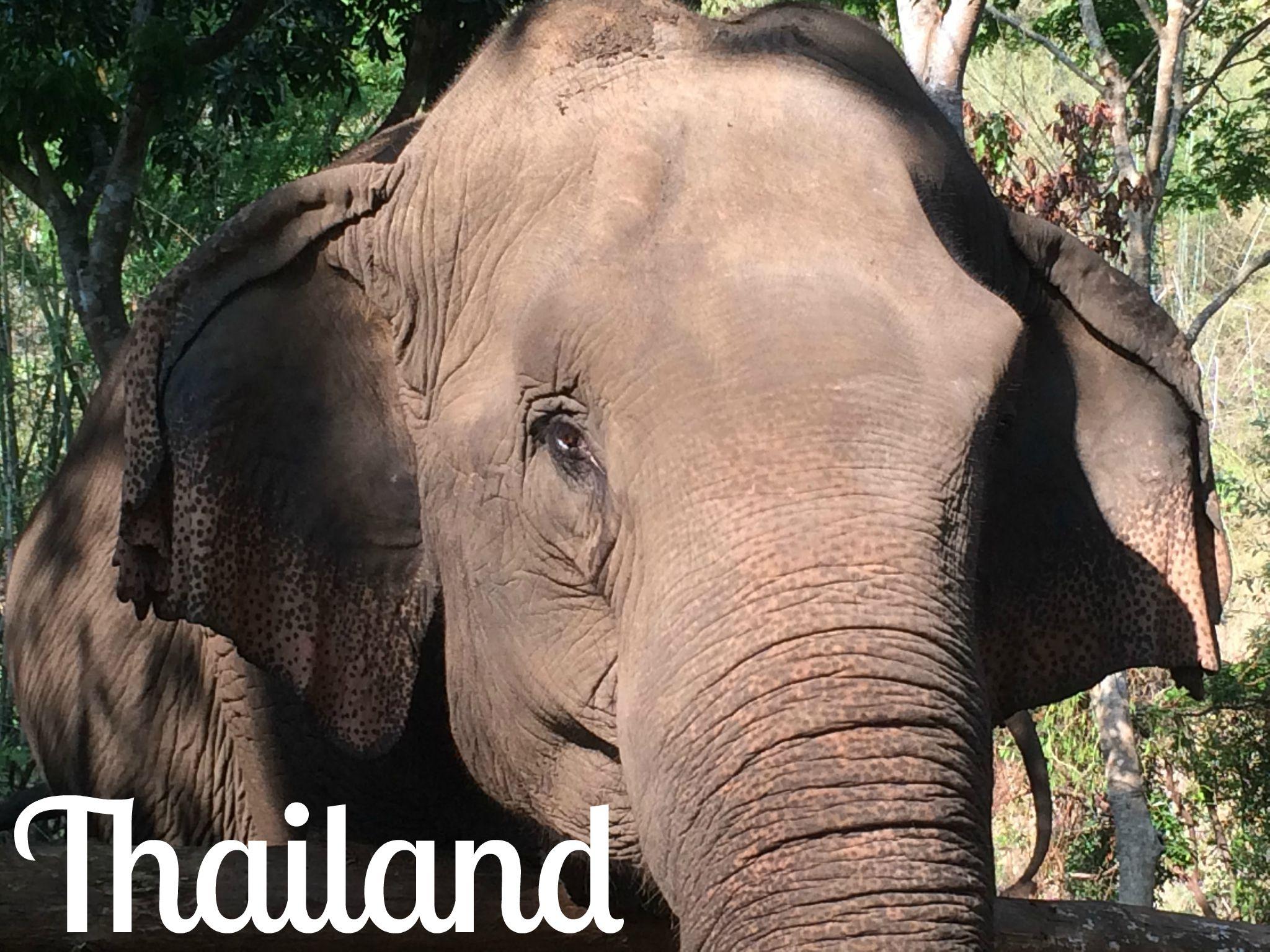 Thailand - Wanderalot